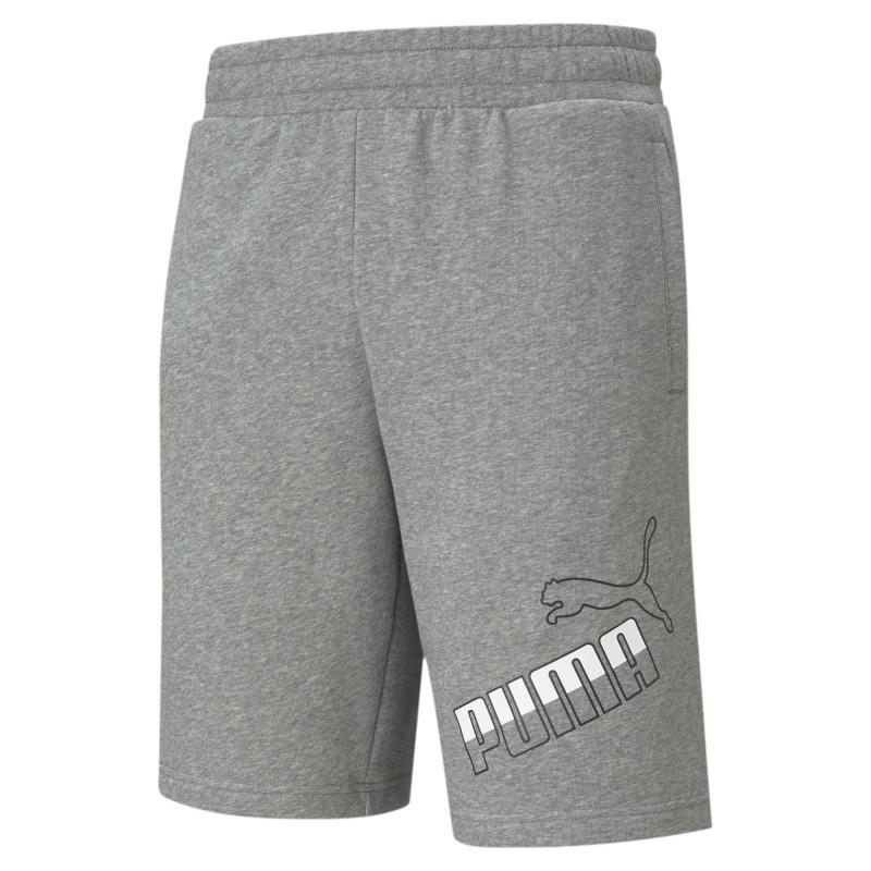 Puma Big Logo Shorts 10''TR grey, 585775-03