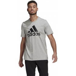 Adidas Essentials Big Logo GK9123 Gray, GK9123