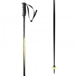 Ski Poles HEAD WORLDCUP SL