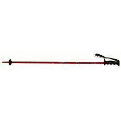 Junior Ski Poles HEAD MASTERS red