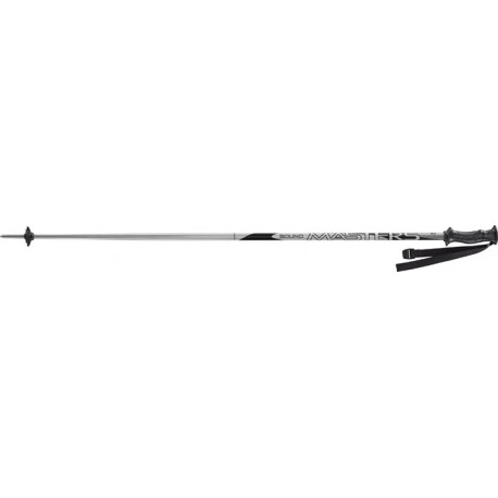 Junior Ski Poles HEAD MASTERS grey