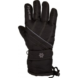 Ski Gloves Black/Grey (ZWG)