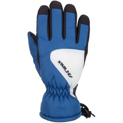 Ski Gloves Jounior blue