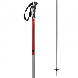 Ski Poles HEAD MULTI S silver-red